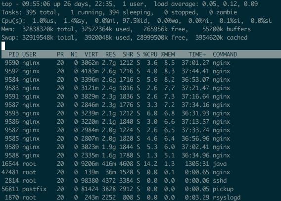 nginx内存占用过高